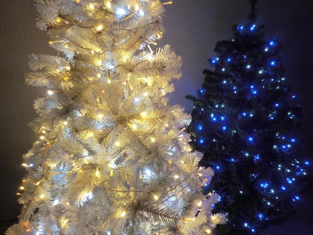 クリスマスツリー・イルミネーション